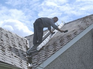 Moss Clearance From Roof Manually Scraping Moss Off A